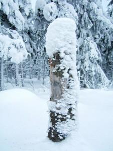 Winter rund um Altenberg - Foto: die-infoseiten.de