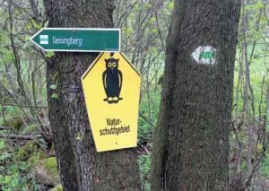 Von Oberbärenburg zum Geisingberg